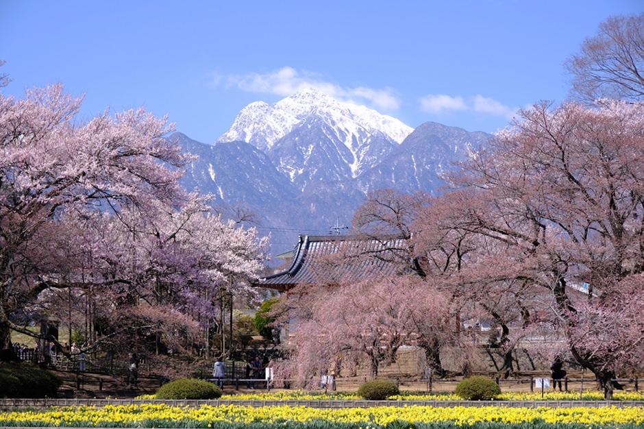 実相寺から見た甲斐駒ヶ岳