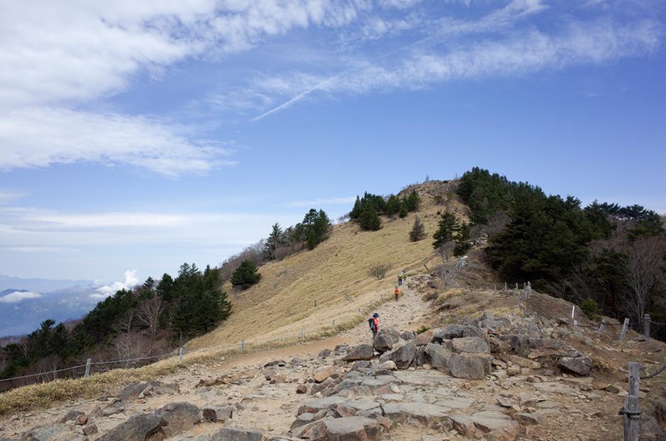大菩薩嶺の稜線
