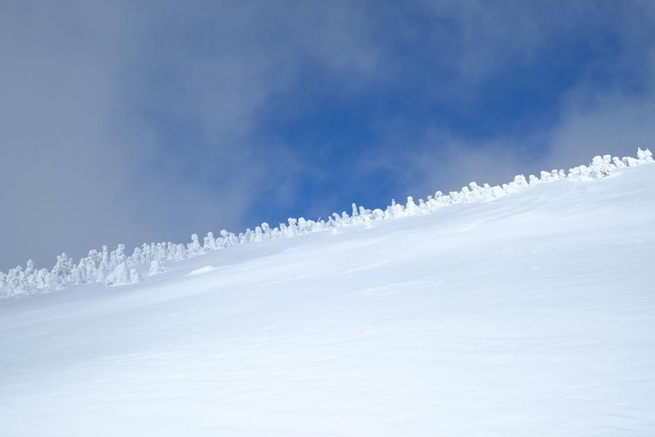 西大巓の雪原とスノーモンスター