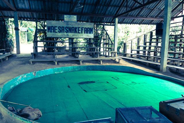 Maesa Snake Farm