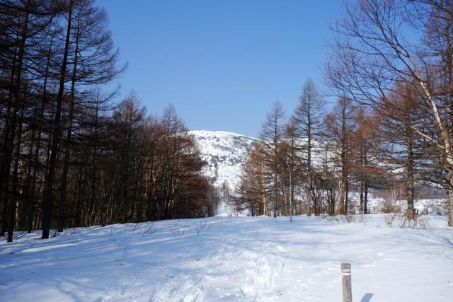 第一ロマンスリフトを降りたとこから見た湯ノ丸山