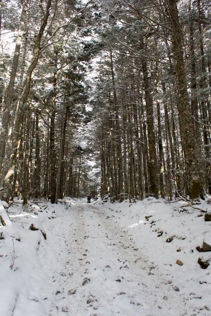 赤岳鉱泉への雪道