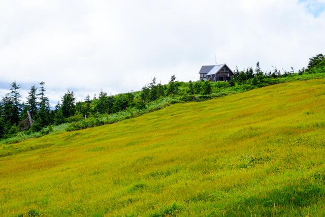 会津駒ヶ岳の湿原