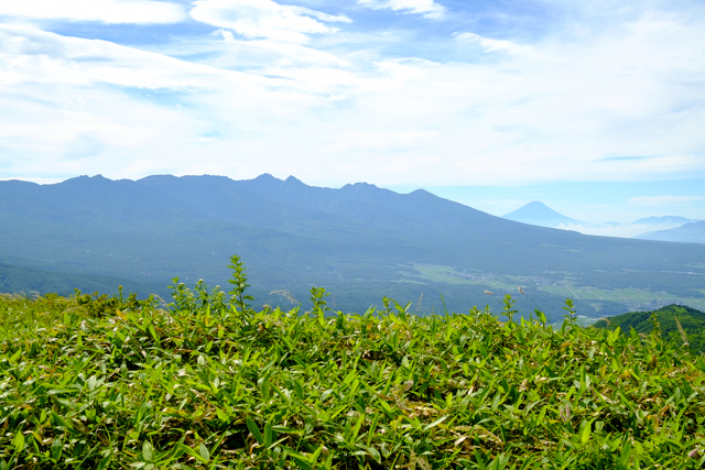 車山登山道からの八ヶ岳と富士山