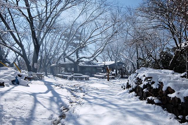 雪の積もった小仏城山