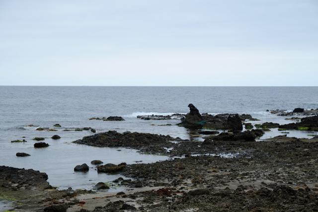能登のゴジラ岩