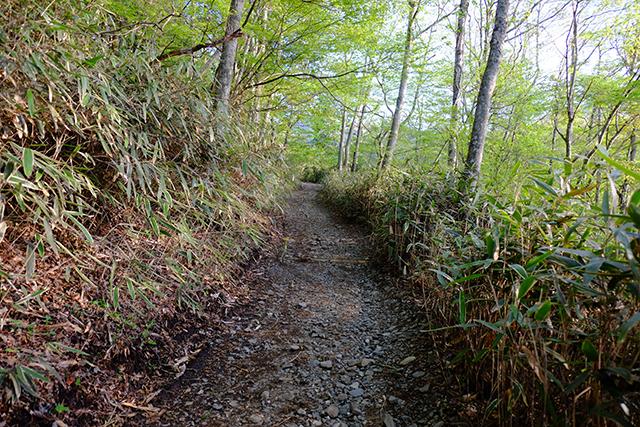 石割神社への登山道