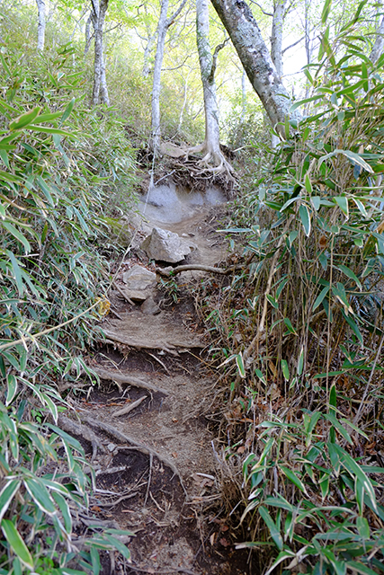 石割山山頂への登山道