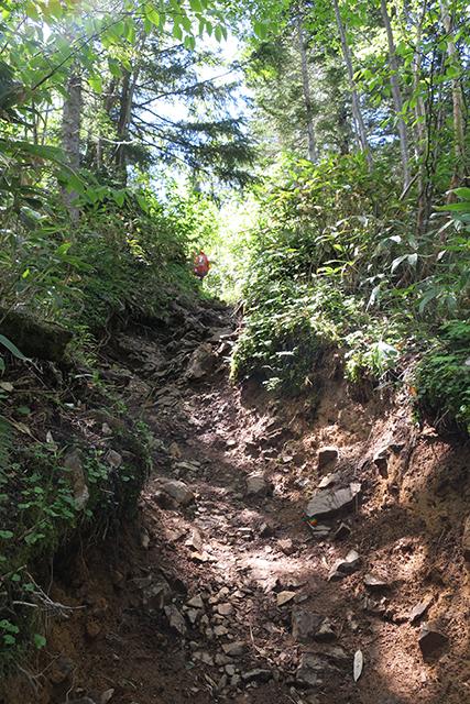 西穂山荘への登山道