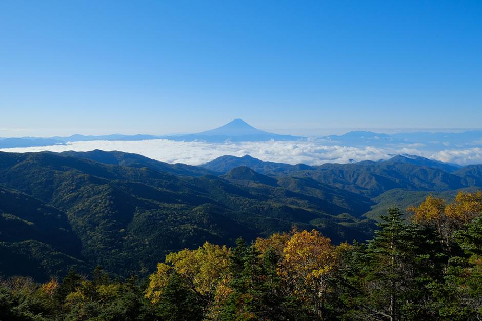 朝日岳あたりからの富士山