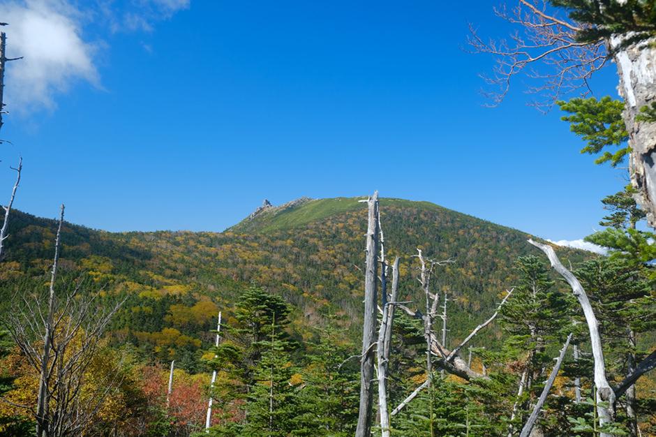 紅葉の金峰山