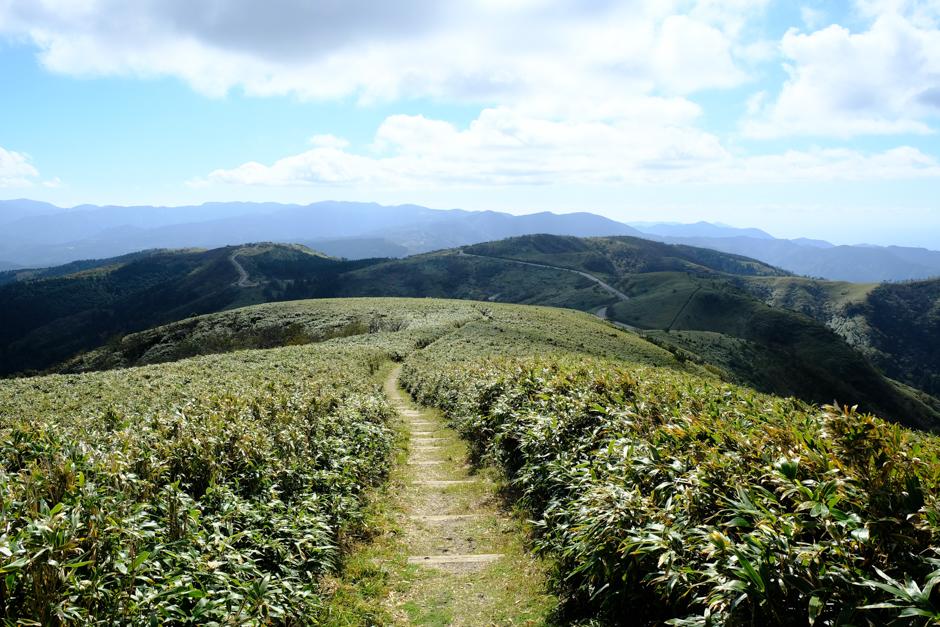 達磨山山頂から続く伊豆山稜線歩道